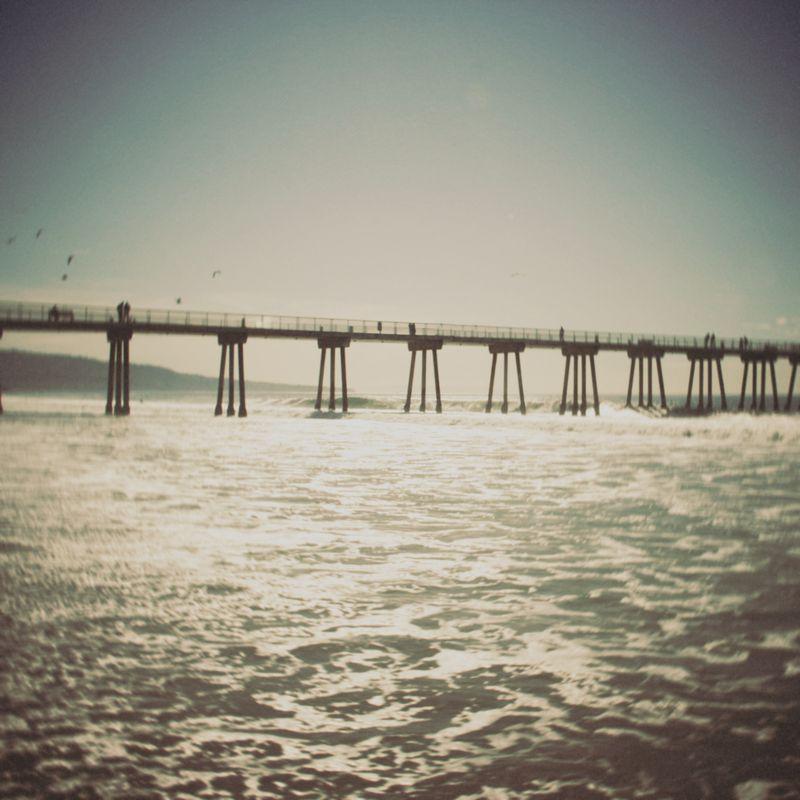 California 113